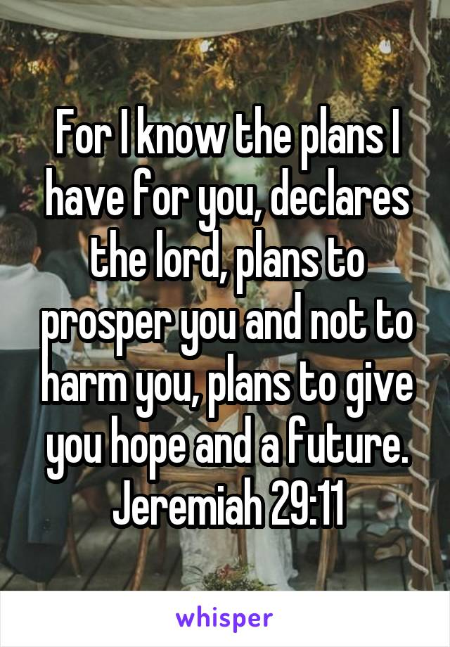 For I know the plans I have for you, declares the lord, plans to prosper you and not to harm you, plans to give you hope and a future. Jeremiah 29:11