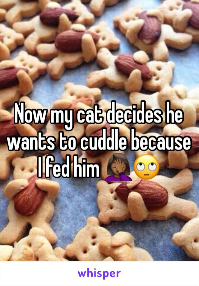 Now my cat decides he wants to cuddle because I fed him 🤦🏾‍♀️🙄