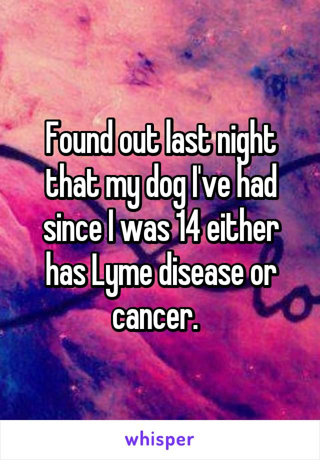 Found out last night that my dog I've had since I was 14 either has Lyme disease or cancer.