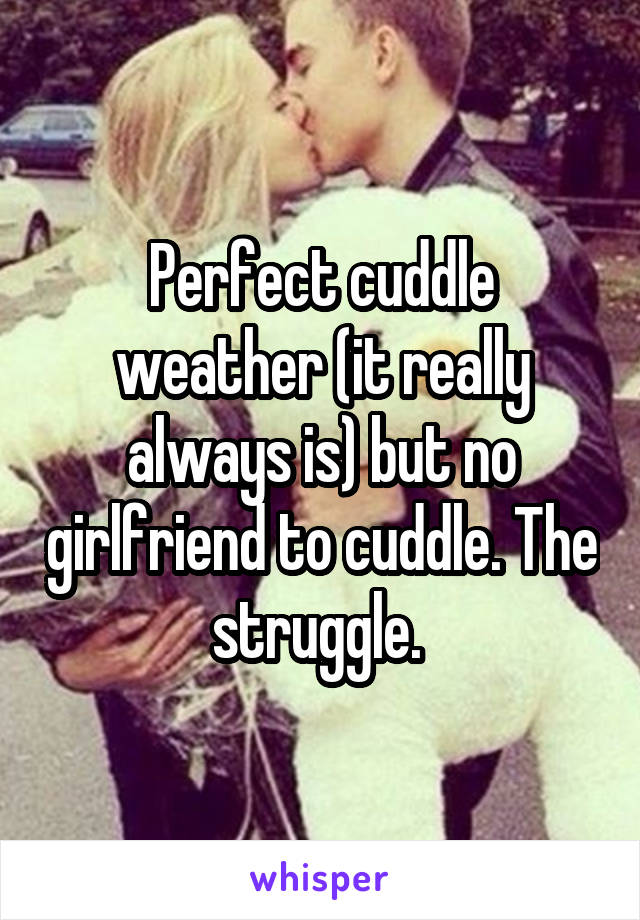 Perfect cuddle weather (it really always is) but no girlfriend to cuddle. The struggle.