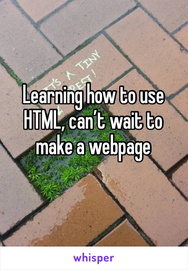 Learning how to use HTML, can't wait to make a webpage