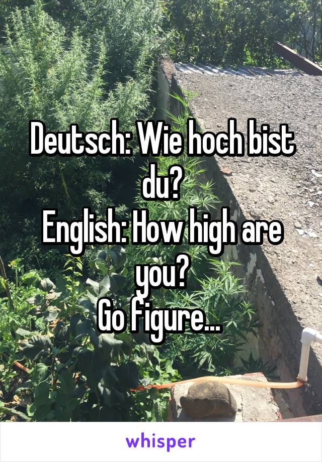Deutsch: Wie hoch bist du? English: How high are you? Go figure...