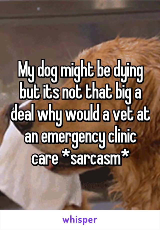 My dog might be dying but its not that big a deal why would a vet at an emergency clinic care *sarcasm*