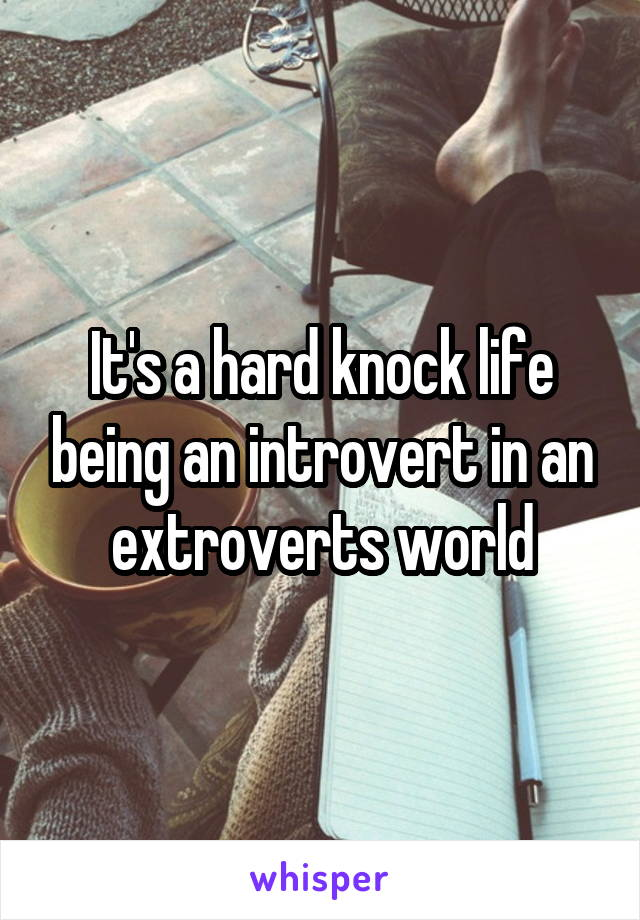It's a hard knock life being an introvert in an extroverts world