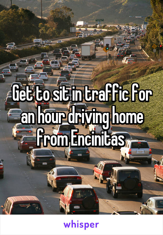 Get to sit in traffic for an hour driving home from Encinitas