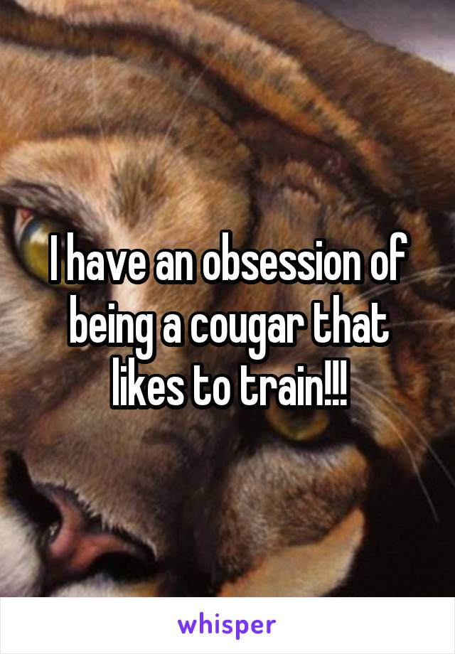 I have an obsession of being a cougar that likes to train!!!