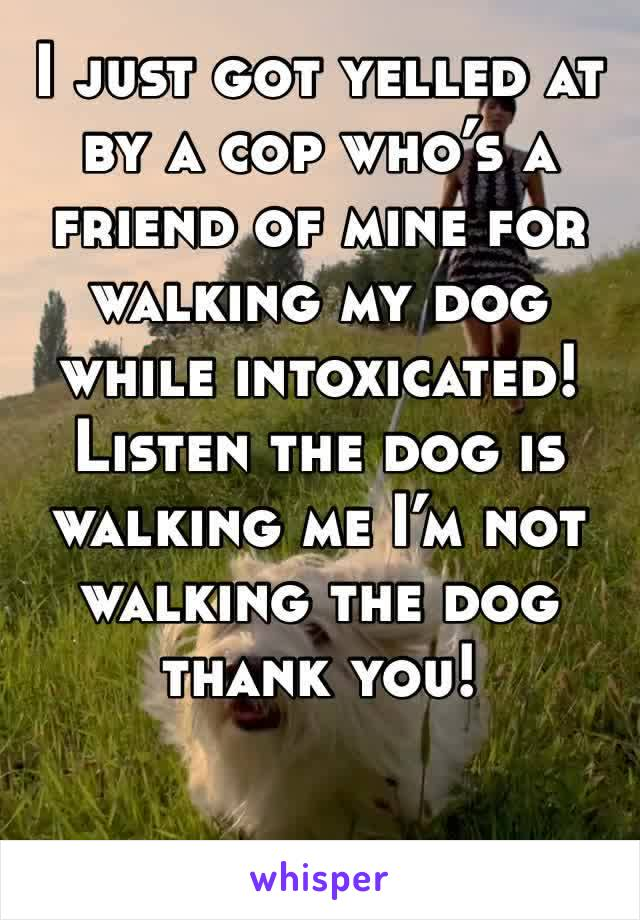 I just got yelled at by a cop who's a friend of mine for walking my dog while intoxicated! Listen the dog is walking me I'm not walking the dog thank you!