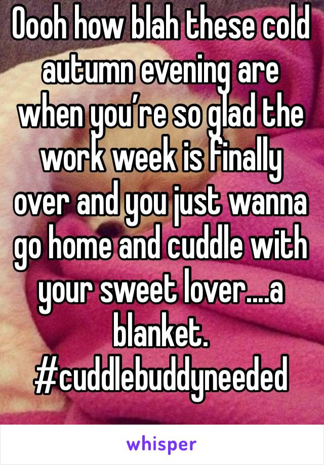 Oooh how blah these cold autumn evening are when you're so glad the work week is finally over and you just wanna go home and cuddle with your sweet lover....a blanket. #cuddlebuddyneeded