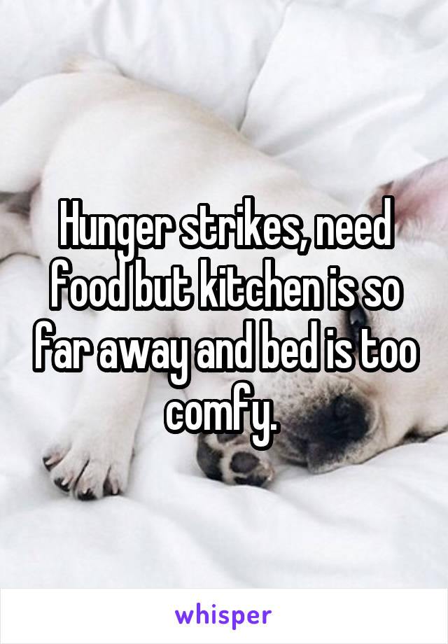Hunger strikes, need food but kitchen is so far away and bed is too comfy.