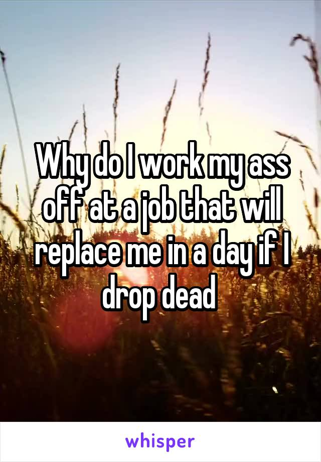 Why do I work my ass off at a job that will replace me in a day if I drop dead