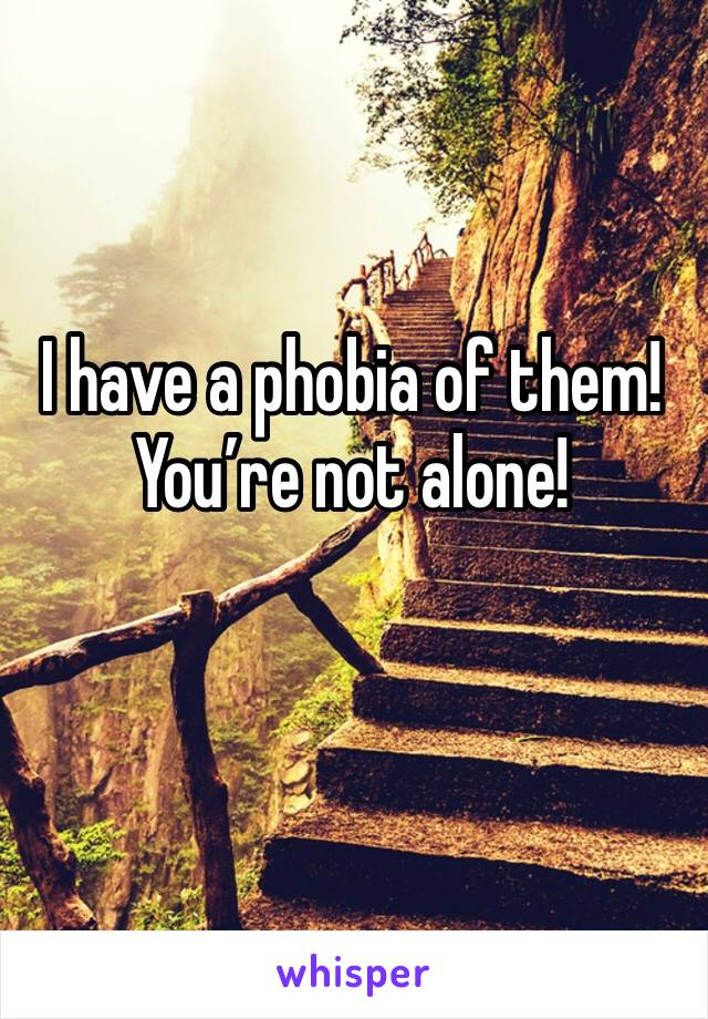 I have a phobia of them! You're not alone!