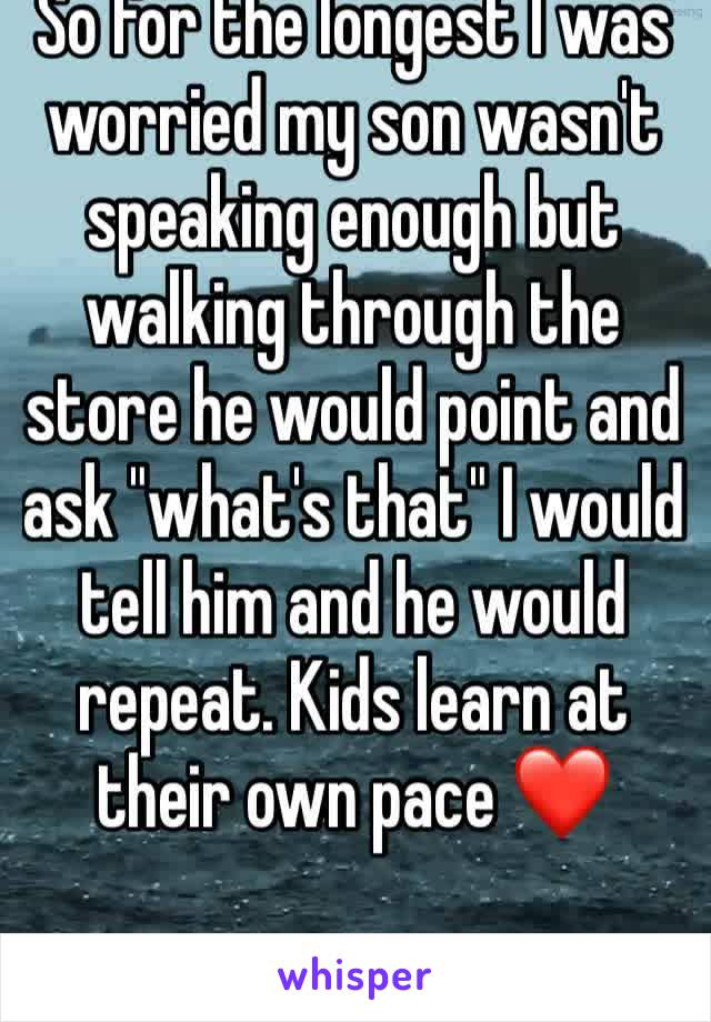 """So for the longest I was worried my son wasn't speaking enough but walking through the store he would point and ask """"what's that"""" I would tell him and he would repeat. Kids learn at their own pace ❤️"""