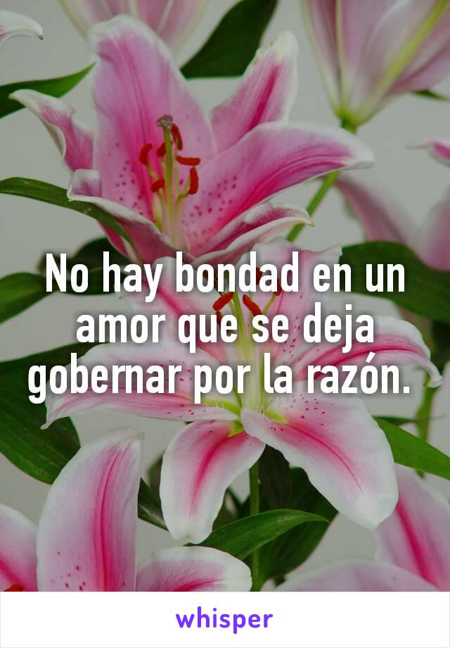 No hay bondad en un amor que se deja gobernar por la razón.