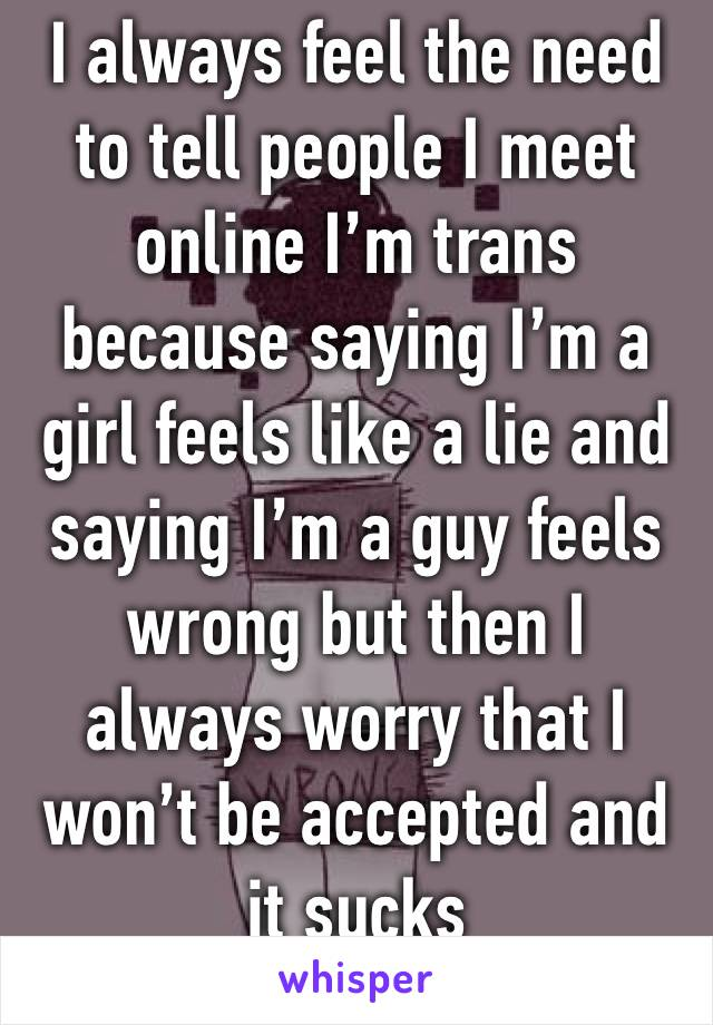 I always feel the need to tell people I meet online I'm trans because saying I'm a girl feels like a lie and saying I'm a guy feels wrong but then I always worry that I won't be accepted and it sucks