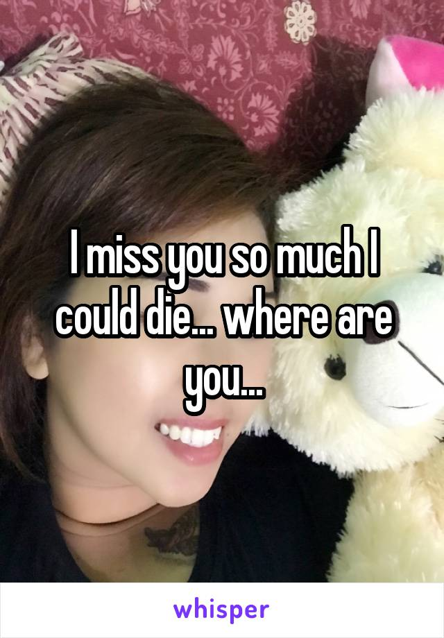 I miss you so much I could die... where are you...