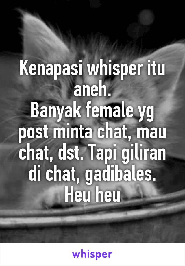 Kenapasi whisper itu aneh. Banyak female yg post minta chat, mau chat, dst. Tapi giliran di chat, gadibales. Heu heu