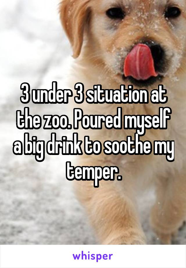 3 under 3 situation at the zoo. Poured myself a big drink to soothe my temper.
