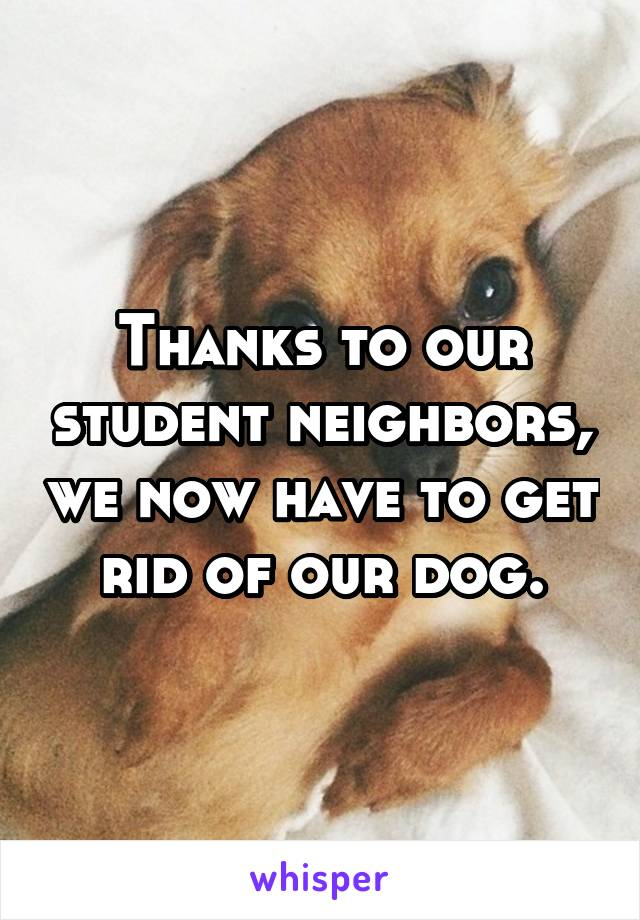 Thanks to our student neighbors, we now have to get rid of our dog.