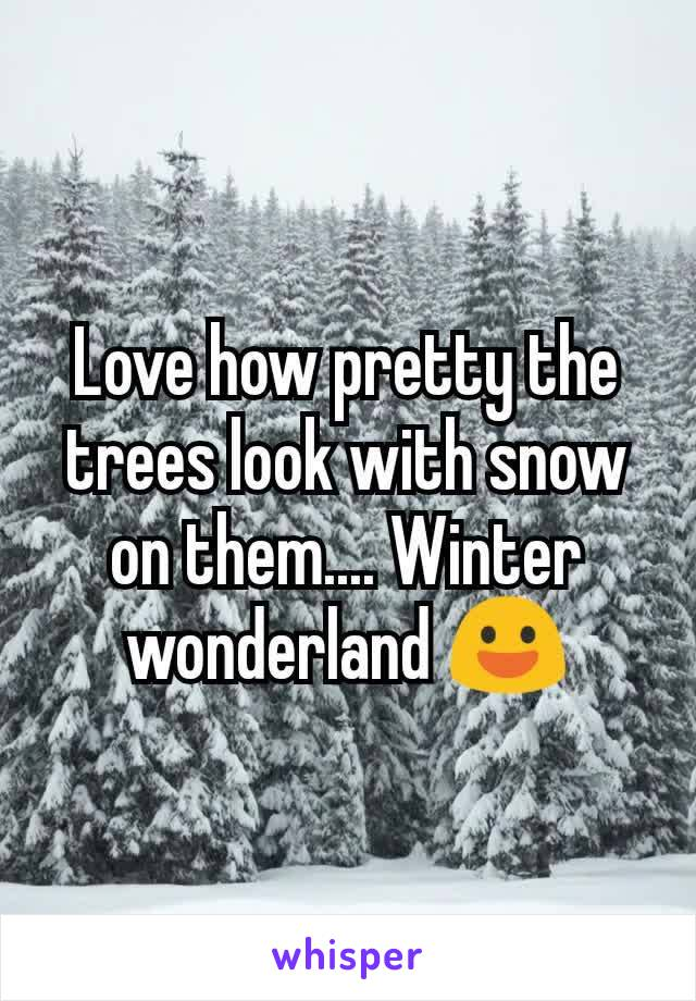 Love how pretty the trees look with snow on them.... Winter wonderland 😃