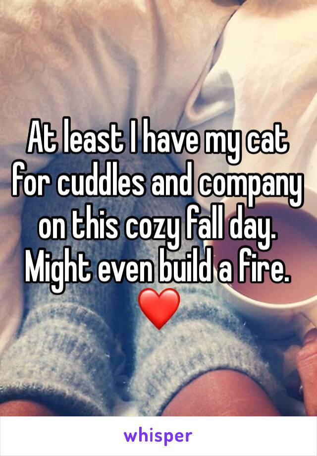 At least I have my cat for cuddles and company on this cozy fall day.  Might even build a fire.  ❤️