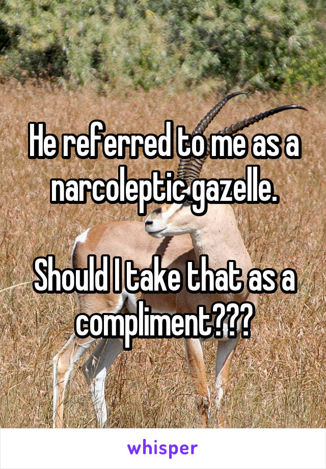 He referred to me as a narcoleptic gazelle.  Should I take that as a compliment???