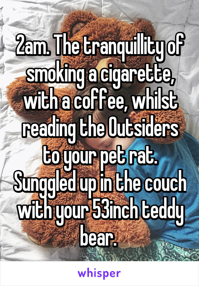 2am. The tranquillity of smoking a cigarette, with a coffee, whilst reading the Outsiders to your pet rat. Sunggled up in the couch with your 53inch teddy bear.
