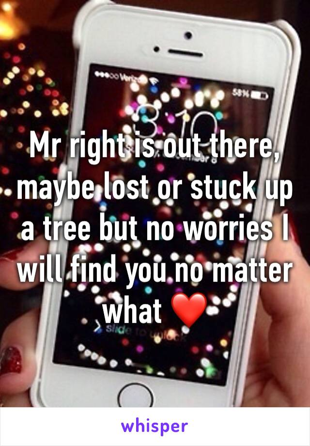 Mr right is out there, maybe lost or stuck up a tree but no worries I will find you no matter what ❤️