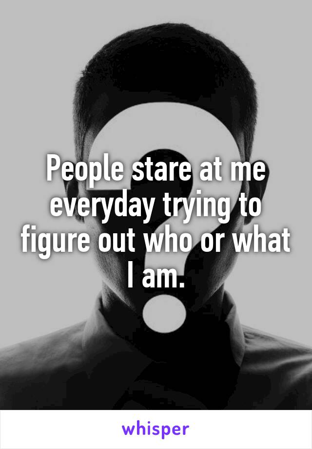 People stare at me everyday trying to figure out who or what I am.