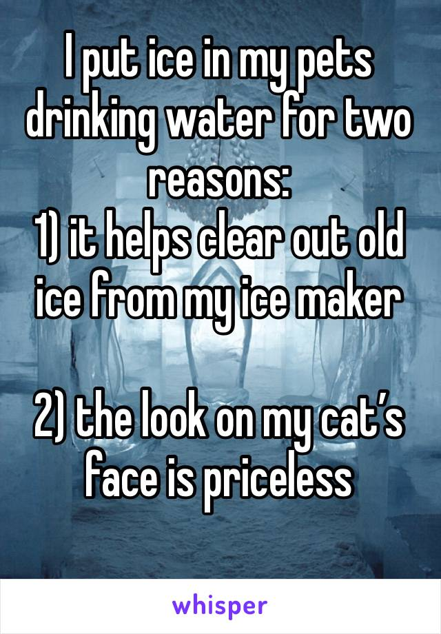 I put ice in my pets drinking water for two reasons: 1) it helps clear out old ice from my ice maker  2) the look on my cat's face is priceless
