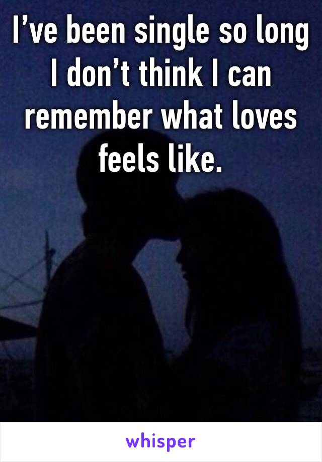 I've been single so long I don't think I can remember what loves feels like.