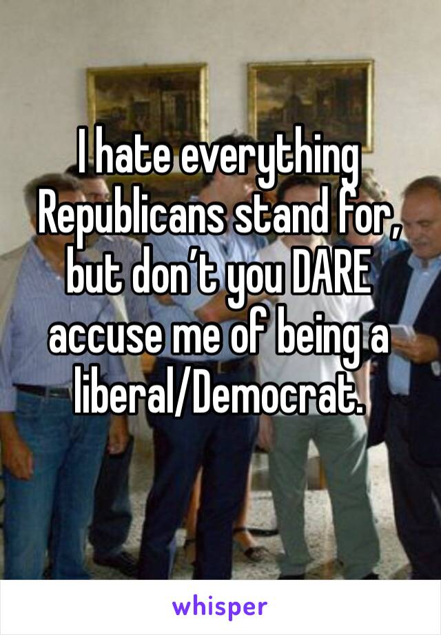 I hate everything Republicans stand for, but don't you DARE accuse me of being a liberal/Democrat.