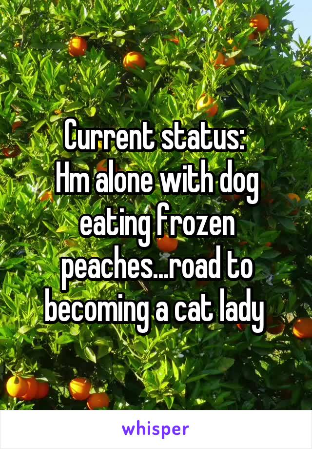 Current status:  Hm alone with dog eating frozen peaches...road to becoming a cat lady