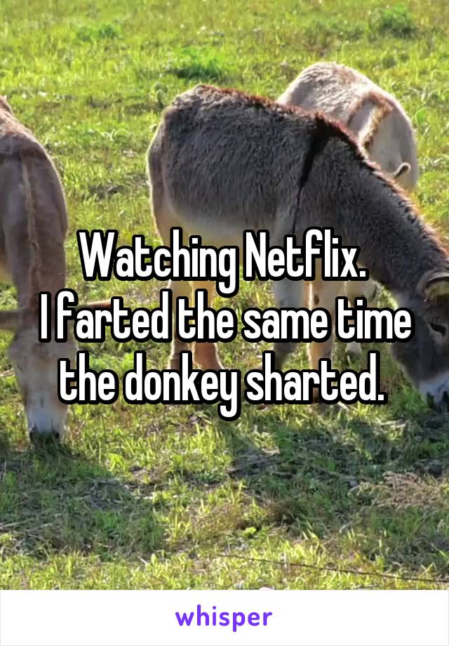Watching Netflix.  I farted the same time the donkey sharted.