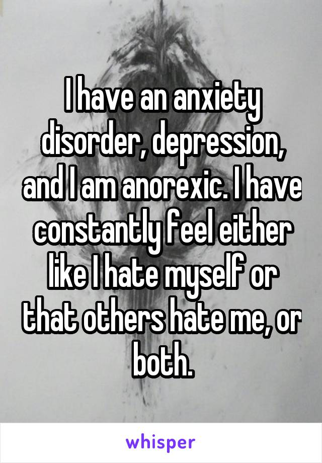 I have an anxiety disorder, depression, and I am anorexic. I have constantly feel either like I hate myself or that others hate me, or both.