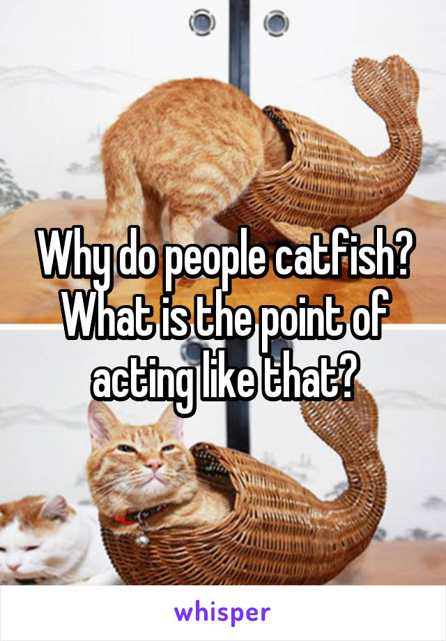 Why do people catfish? What is the point of acting like that?