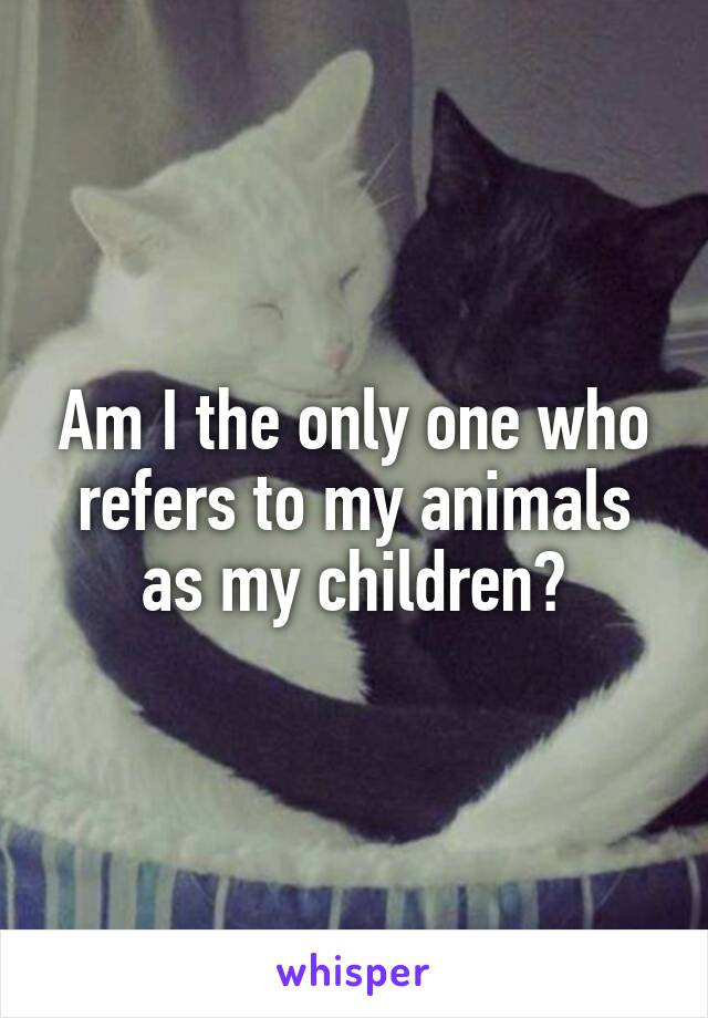 Am I the only one who refers to my animals as my children?