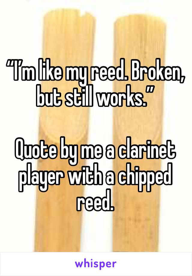 """""""I'm like my reed. Broken, but still works.""""   Quote by me a clarinet player with a chipped reed."""