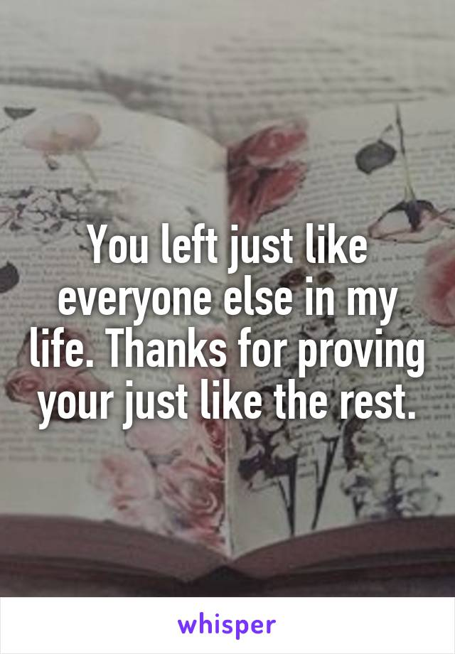 You left just like everyone else in my life. Thanks for proving your just like the rest.