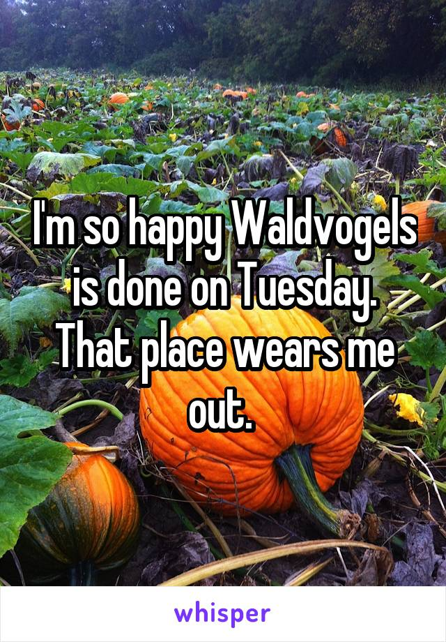 I'm so happy Waldvogels is done on Tuesday. That place wears me out.