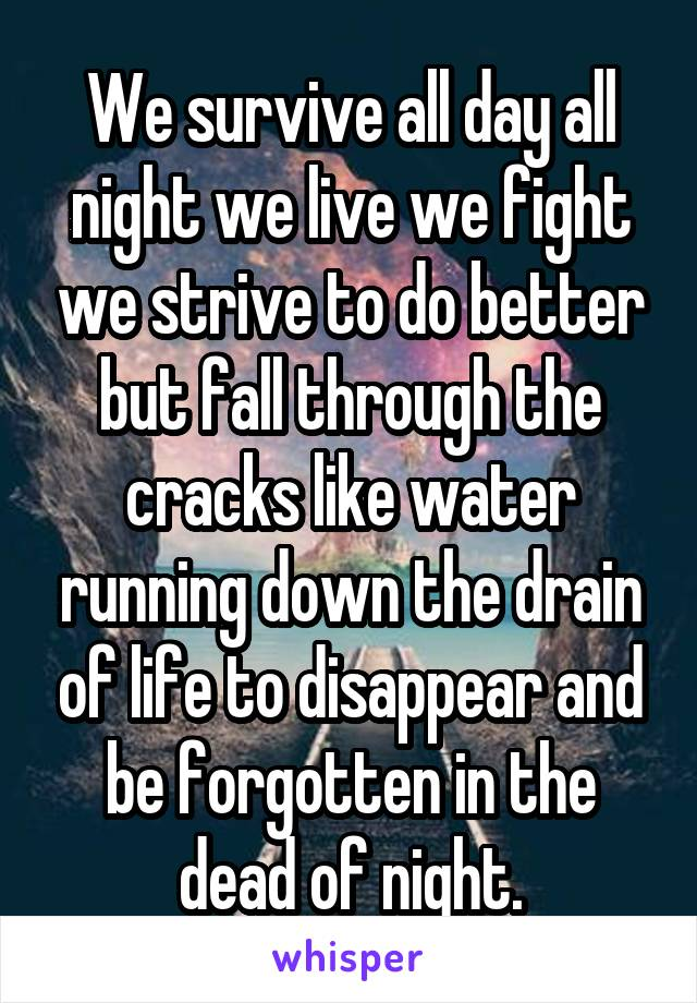 We survive all day all night we live we fight we strive to do better but fall through the cracks like water running down the drain of life to disappear and be forgotten in the dead of night.