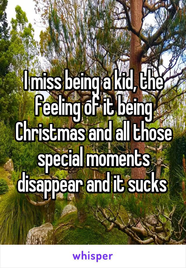 I miss being a kid, the feeling of it being Christmas and all those special moments disappear and it sucks