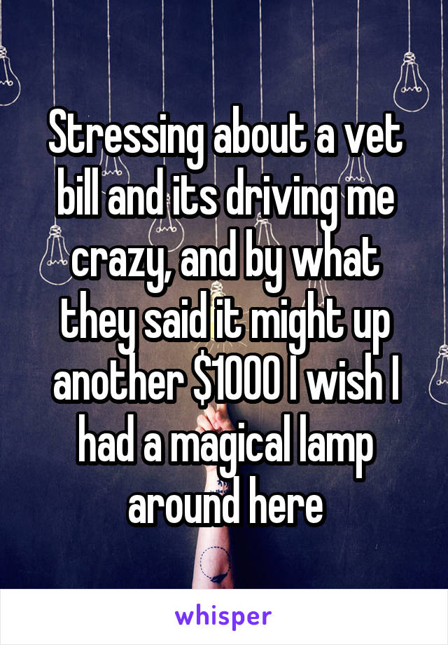 Stressing about a vet bill and its driving me crazy, and by what they said it might up another $1000 I wish I had a magical lamp around here