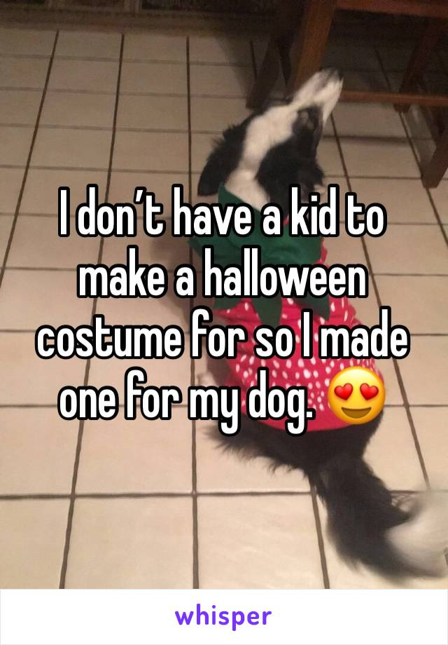 I don't have a kid to make a halloween costume for so I made one for my dog. 😍
