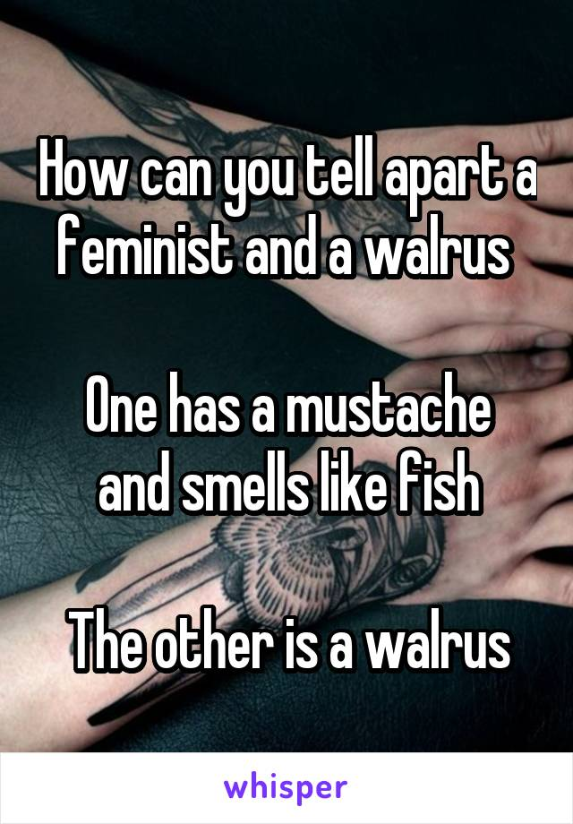 How can you tell apart a feminist and a walrus   One has a mustache and smells like fish  The other is a walrus