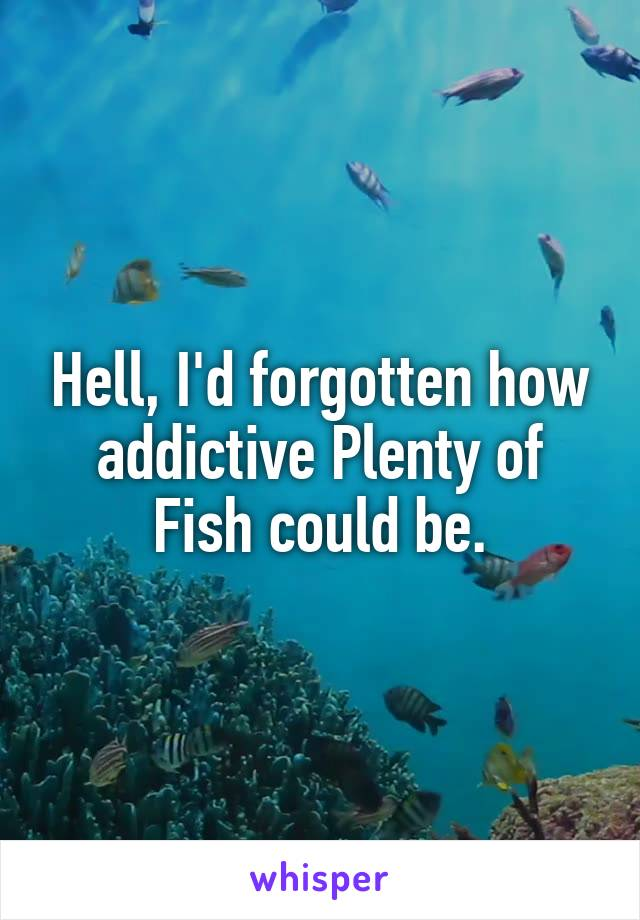Hell, I'd forgotten how addictive Plenty of Fish could be.