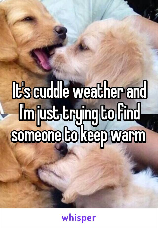 It's cuddle weather and I'm just trying to find someone to keep warm