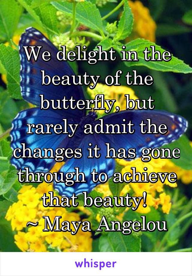 We delight in the beauty of the butterfly, but rarely admit the changes it has gone through to achieve that beauty!  ~ Maya Angelou