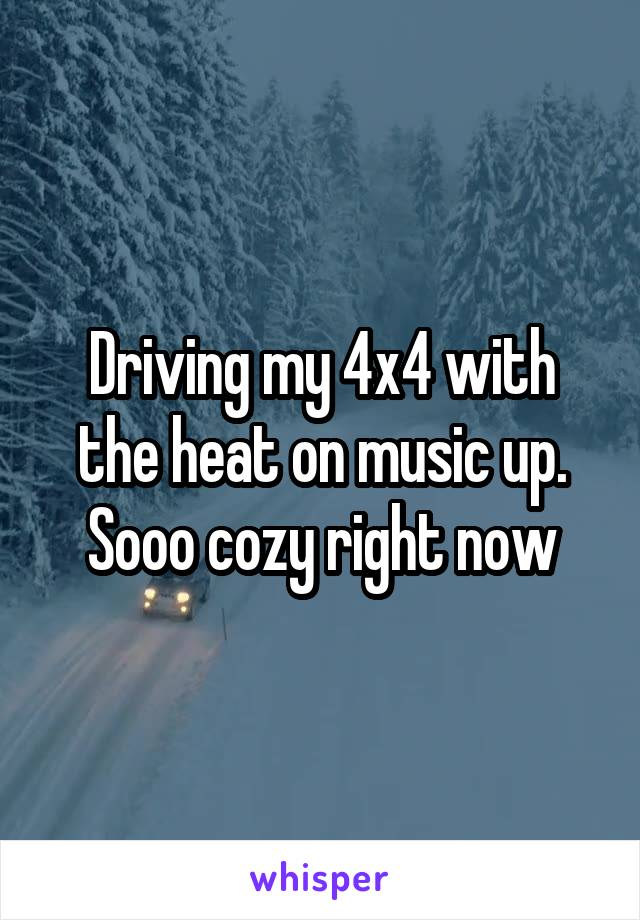 Driving my 4x4 with the heat on music up. Sooo cozy right now