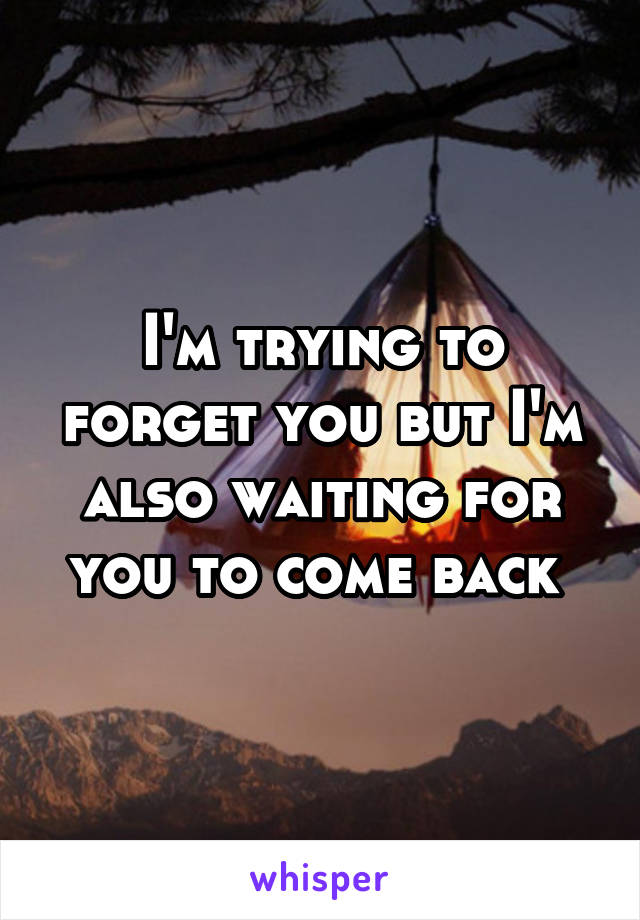 I'm trying to forget you but I'm also waiting for you to come back