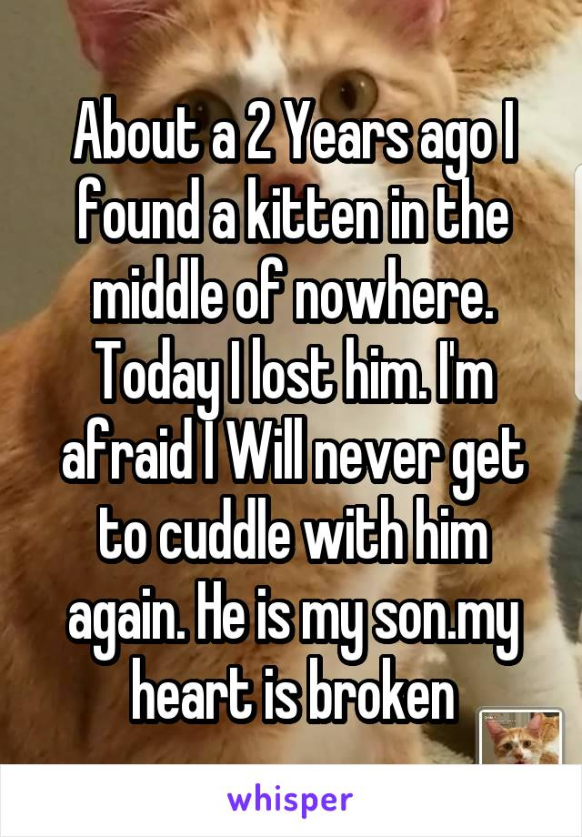 About a 2 Years ago I found a kitten in the middle of nowhere. Today I lost him. I'm afraid I Will never get to cuddle with him again. He is my son.my heart is broken